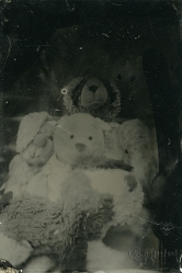 I took my families teddies that we have all had from either babies or very young. This image includes mine, my partner's, and three boys teddies. Immortalised!