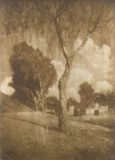 Hugo Henneberg Pomeranian Motif 1906