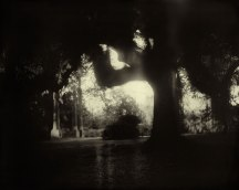 by Sally Mann 1998