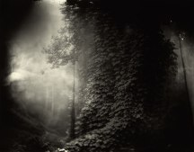 by Sally Mann 1996